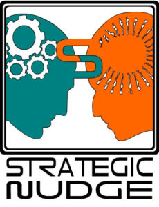 Strategic Nudge Logo